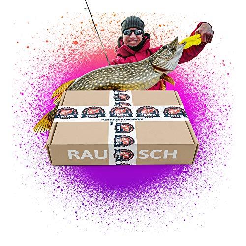 MFB Raubfisch - Kunstköder für Hecht, Zander & Großbarsch im Set, 10-45g