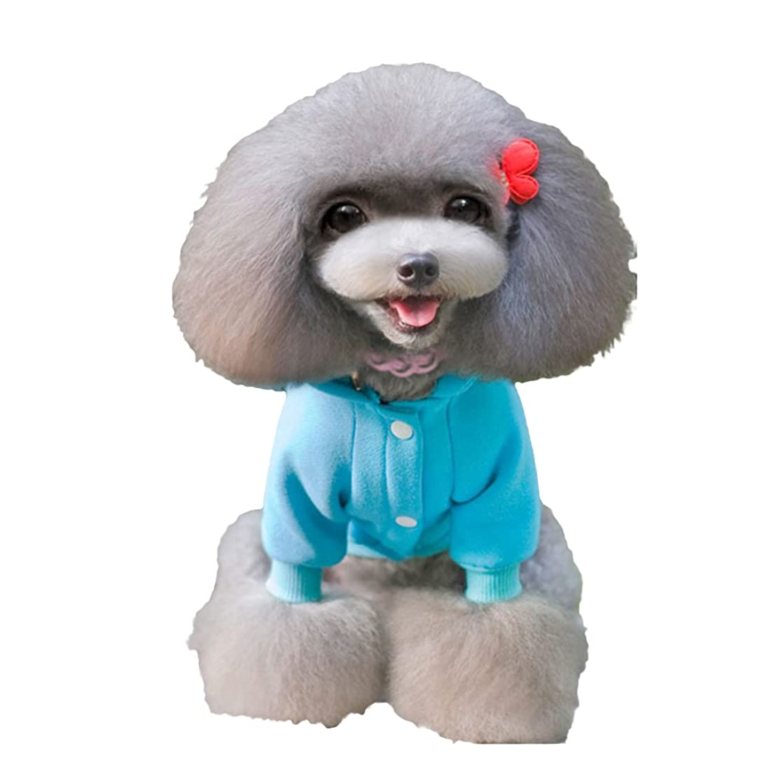瞑想提唱する召集するpekabo 犬服 ペット服 ドックウェア クリスマス サンタ ペット