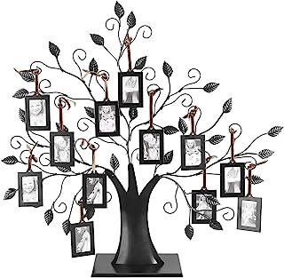 Coloriage Arbre Genealogique.Amazon Fr Arbre Genealogique Livraison Gratuite