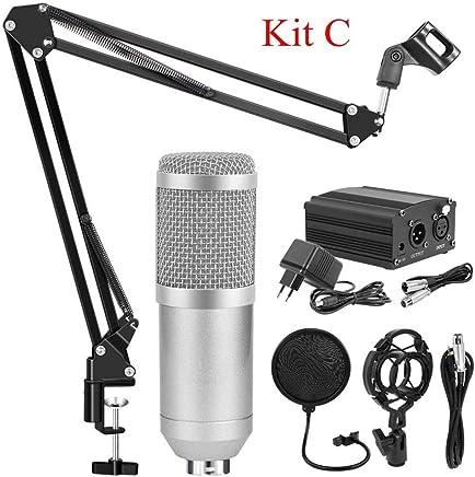 NanYin BM 800 Studio Microfono per Microfono da Karaoke Computer, Kit Microfono Professionale a condensatore con Asta microfonica Studio Mikrofon (Color : Silver Kits C) - Trova i prezzi più bassi