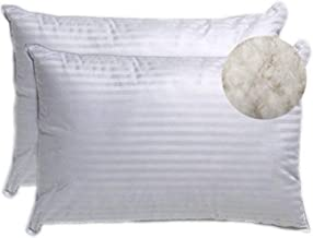 Trance Home Linen Classic Cotton Pillows - 16 x 24-inch White- Pack of 2
