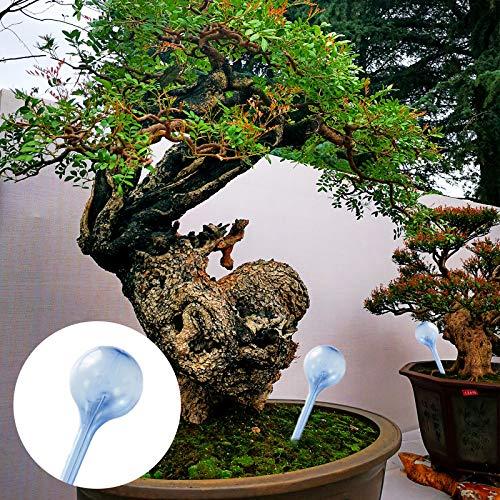 Hileyu Plant Water Dispenser