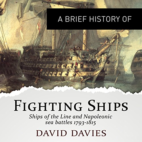 A Brief History of Fighting Ships cover art