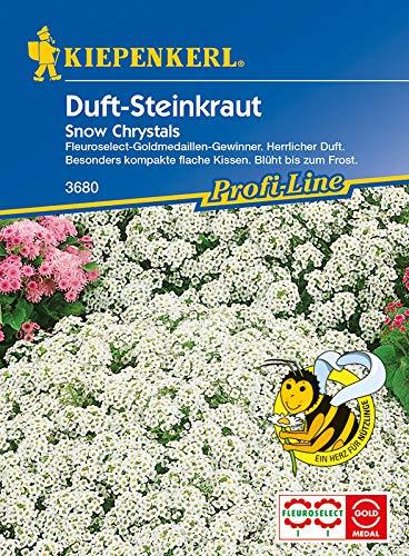 Kiepenkerl 3680 Duft-Steinkraut Lobularia Snow Crystals (Steinkrautsamen)