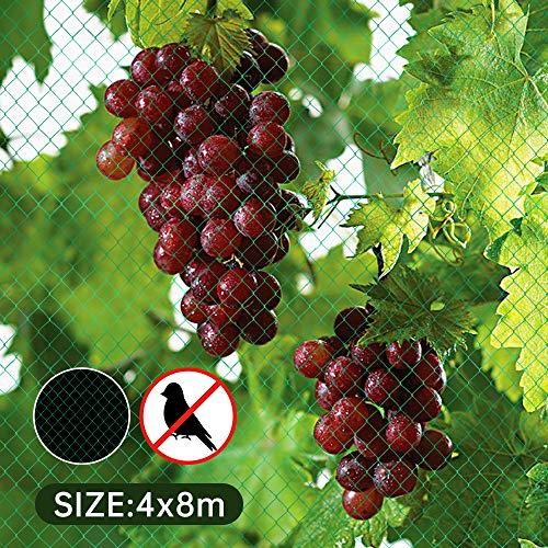 Urijk Filet Anti Oiseaux Mailles Fines Filet de Protection Filet de Jardin, 5 x 10 m Filet en polyéthylène Anti Insectes Vert pour Grappe de Rasin Arbre de Fruitier Plante Légumes Fleurs Cultures