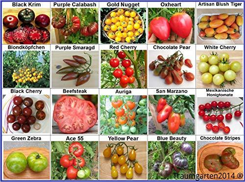 Tomaten Set 1: In Deutschland angebaut, 20 Sorten, TOP Qualität ohne Gentechnik, 100{da66f529b7df2db248012b2dafe38b23e42e8603fd260a00b09047d4bfbfbf86} Naturbelassen und samenfest, Fleischtomate Cherrytomate Cockteiltomate Freilandtomate, Sammlung von Raritäten