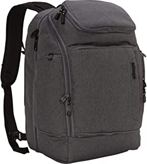 eBags Professional Flight Laptop Backpack (Heathered Graphite)