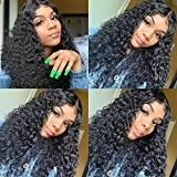 360 Lace Frontal Wigs Human Hair with Baby Hair Pre Plucked Natural Hairline Water Wave Full head Lace Wigs 100% Unprocessed Wet and Wavy Wigs 14 inch by Coisini hair