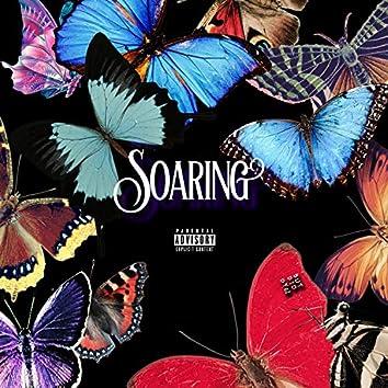 Soaring (feat. Callmesometime)