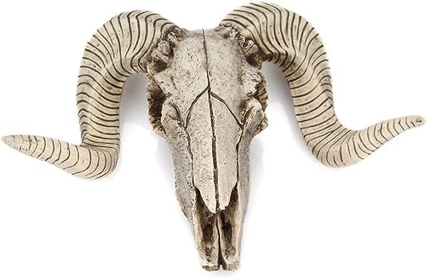 Kuke 人造动物标本野牛头骨装饰环保耐用树脂头骨雕塑壁挂艺术西南牛头骨壁雕家居