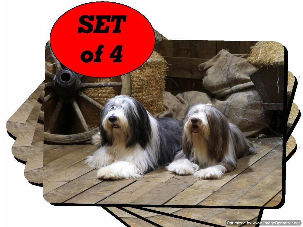 Collie Barbudo perro brillante Set de mesa – Juego de 4 – regalo único para los amantes Doggy 32: Amazon.es: Hogar
