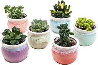 SUN-E 3 Inch Concise Style Container Bonsai Planters Ceramic Flowing Glaze Base Serial Set Six Color Succulent Planter Pot Cactus Plant Pot Flower Pot Window Box with Hole(6 in Set)