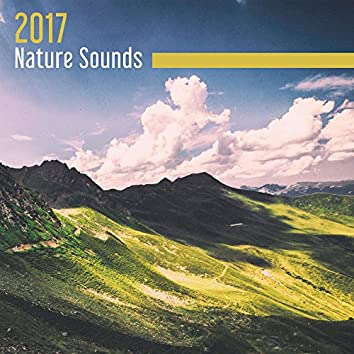 2017 Nature Sounds – Deep Healing Nature Relaxing Music Therapy for Stress Relief and Tranquility