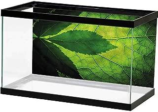 SLLART Undersea World Green,Botanic Exotic Plants Grungy One Side Fish Tank