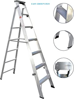 EASY GROUP DUAL PURPOSE LADDER (9 step)