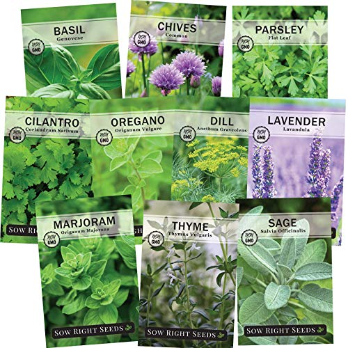 Sow Right Seeds - Herb Garden Seed Collection - Basil, Chives, Parsley, Cilantro, Oregano, Dill, Lavender, Marjoram, Sage & Thyme; Non GMO Heirloom; Instructions for Planting Outdoor or Indoor Garden