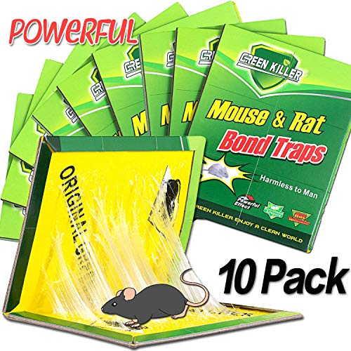 Dekugaa Mouse Trap, Mouse Traps Glue,Rat/Mice Traps Sticky Boards, Strongly Adhesive,Mouse Traps That Work Capturing Indoor and Outdoor Rat Cockroach Spider (10 Pack)