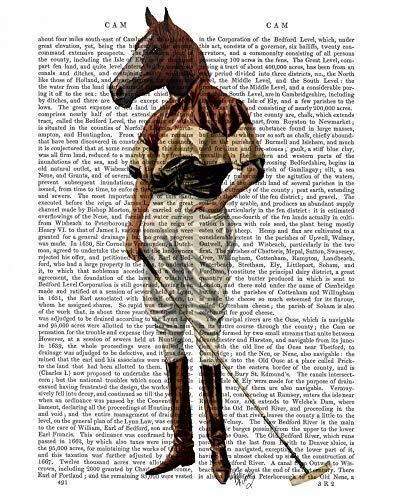 AFDRUKKEN-op-GEROLDE-CANVAS-Polo-Paarden-Volledige-FabFunky-vrije-tijd-Afbeelding-gedruckt-op-canvas-100%-katoen-Opgerolde-canvas-print-Kunstdruk-op-gerold-Afmeting-71_X_55_cm