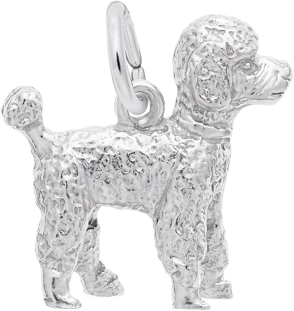 20 Silvertone Perro encanto francés Caniche encanto Colgante