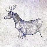 馬と鹿 (映像盤(初回限定)) (CD+DVD(紙ジャケ)) (特典なし)