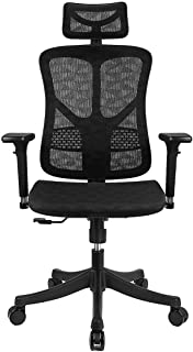 Ergonomic Mesh Office Chair High Back with Adjustable Headrest/Tilt Back/Tension/Lumbar Support/3D Armrest/Seat High End Argomax Computer Desk Chair 360 Swivel Self (Classic)