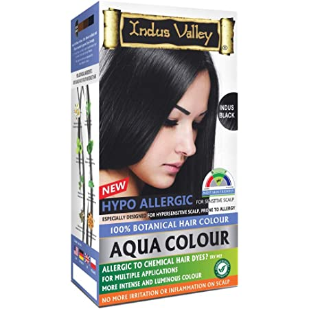 Buy Indus Valley Natural Damage Free Gel Colour For Hair Black 1 0 20g 200ml Online At Low Prices In India Amazon In