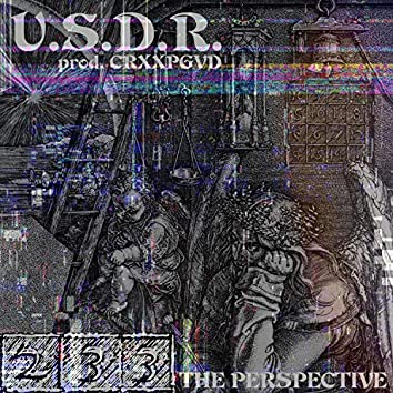 The Perspective (feat. Crxxpgvd)