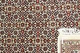 Nain Trading Indo Bidjar Royal 240x172 Orientteppich Teppich Rost/Lila Handgeknüpft Indien - 2