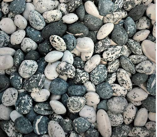 Edible Beach Sea Side Rocks For Cake Decoration and Candy Buffets (8oz Chocolate Beach Pebbles)