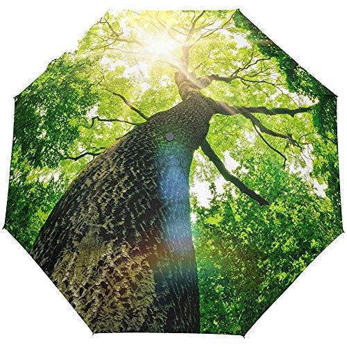 Nature Forest Tree Auto Open Close Sun Rain Umbrella
