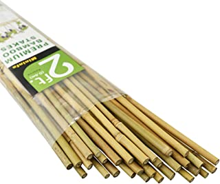 Mininfa Natural Bamboo Stakes 2 Feet, Eco-Friendly Garden Stakes, Plant Stakes Supports Climbing for Tomatoes, Trees, Beans, 30 Pack