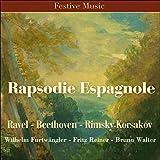 Serenade Nr. 10 in B-Flat Major, K. 361 'Gran Partita': II. Menuetto