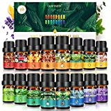 Huiles Essentielles-GLAMADOR Set de 16 Huiles Essentielles pour Diffuseur Pures et Naturelles-Aromathérapie Humidificateurs Oil, Effets Différents Coffret Cadeau Huile Essentielle Aromathérapie Bio