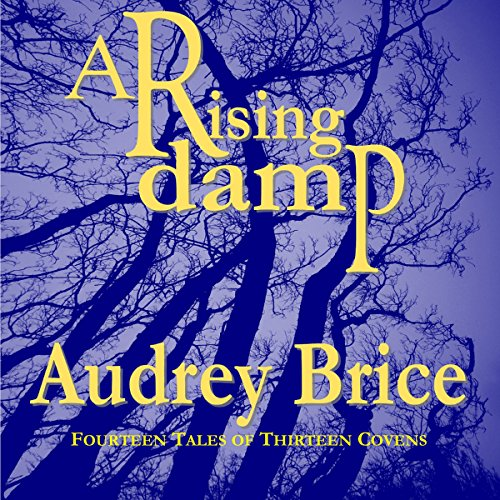 A Rising Damp audiobook cover art