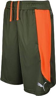 a1691eff55 Amazon.com: PUMA - Shorts / Clothing: Clothing, Shoes & Jewelry