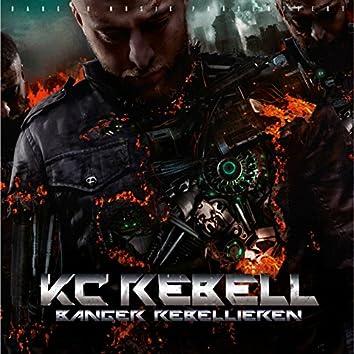 Banger Rebellieren (Deluxe Version)