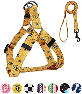 QQPETS Dog Harness Leash Set, Adjustable Heavy Duty No Pull Halter Harnesses for Puppy Extra Small Dogs, Back Clip, Anti-T...