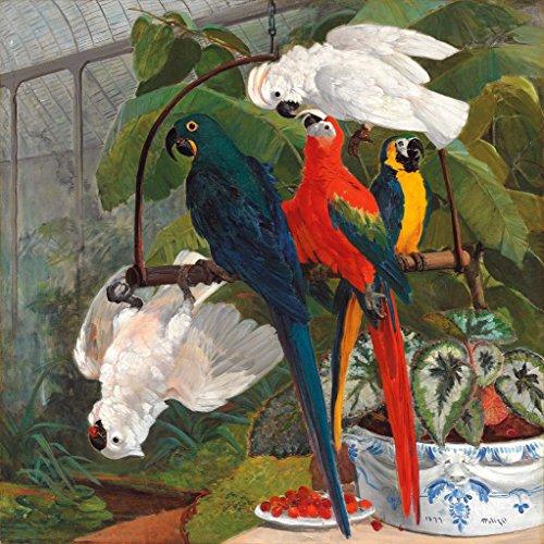 Kunstdruck/Poster: Filippo Palizzi Papageien in Einem Gewächshaus - hochwertiger Druck, Bild, Kunstposter, 100x100 cm