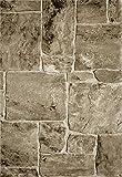 VIMODA Teppich Modern Stein Mauer Optik in Beige Braun, Maße:120 x 170 cm - 5