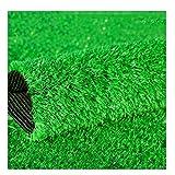 XEWNEG 屋外人工芝カーペット、緑の暗号化ガーデン偽の芝生インテリア幼稚園の装飾、杭の高さ15 Mm(サイズ:2x1m) (Size : 2x5m)