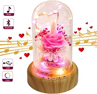 SWEETIME Pink Rose Night Light Real Preserved Rose in Glass Dome, Preserved Rose Flower Lamp with Bluetooth Speaker, Forever Flowers Rose Gift for Her on Mother`s Day, Birthday, Valentine Day.