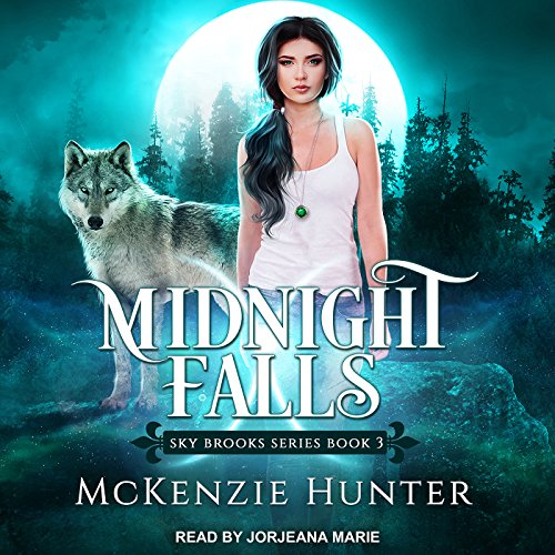 Page de couverture de Midnight Falls