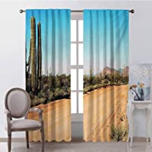 GUUVOR Saguaro Blackout Curtain Earth Path with Giant Cactus Plants to The South American Desert Cactus Picture 2 Panel Sets W52 x L63 Inch Multicolor