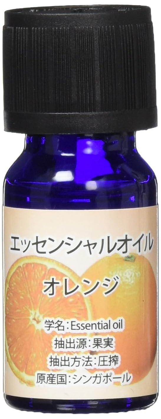 ご飯痴漢ホストエッセンシャルオイル(天然水溶性) 2個セット オレンジ?WJ-726