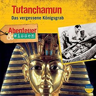 Tutanchamun - Das vergessene Königsgrab     Abenteuer & Wissen              Autor:                                                                                                                                 Maja Nielsen                               Sprecher:                                                                                                                                 Volker Brandt                      Spieldauer: 1 Std. und 2 Min.     9 Bewertungen     Gesamt 3,7