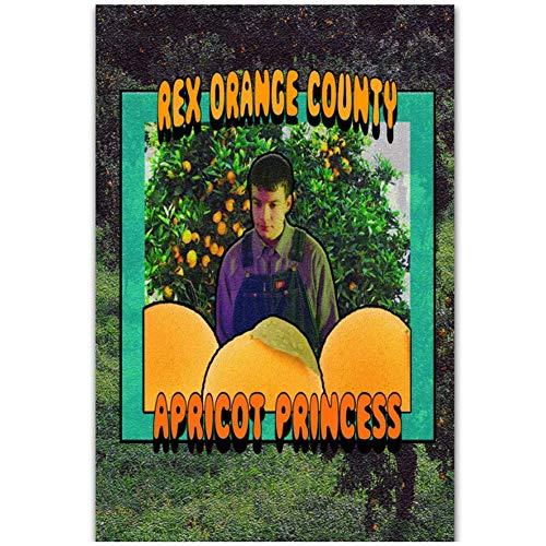 NRRTBWDHL Rex Orange County Popmusik Sänger Benutzerdefinierte Musikalbum Kunst Plakat Leinwand Malerei Wohnkultur Poster und Drucke -50x70cm Kein Rahmen