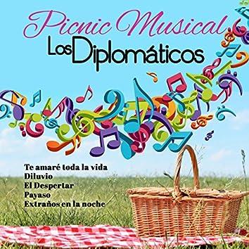 Picnic Musical