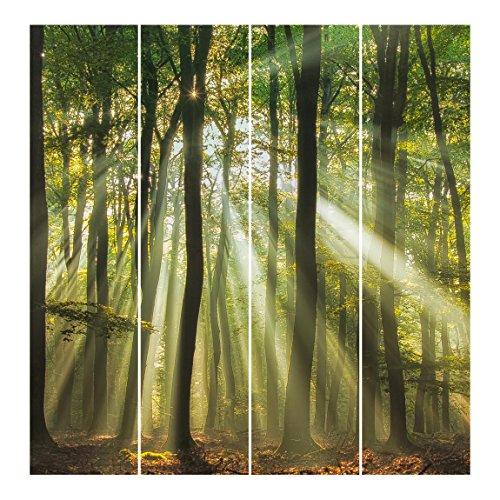 Bilderwelten Schiebegardinen Sonnentag im Wald - Deckenhalterung, 4X 250 x 60cm