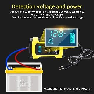 Amazon.es: cargador de baterias lidl: Coche y moto