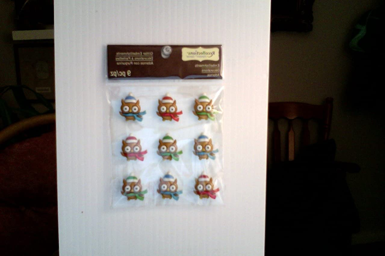 Holiday Christmas Winter Owl Stickers ~ Dimensional Raised Layered 3D ~ 1 Sheet 9 Piece SO Cute!